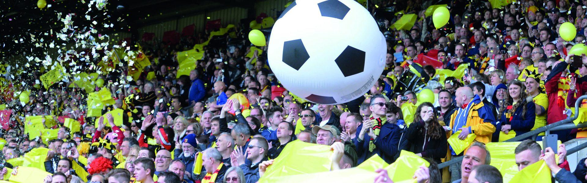 Watford FC fans